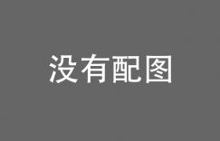 胡锡进辟谣中印冲突20名解放军受伤