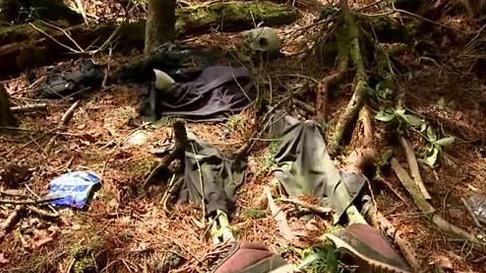 日本自杀森林之谜 青木原树海为什么成为日本自杀圣地