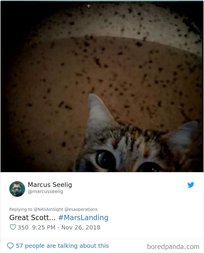 """NASA洞察号着陆传来火星表面照片 网友""""才华病""""发作脑洞大开"""